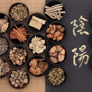 Ventura Chinese Herbal Medicines 2 300x300 - Fatty Liver – What You should Know
